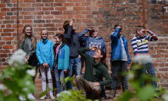 Wald- und Wiesen-AG auf dem Klosterhof